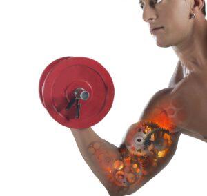 carboidrati per massa